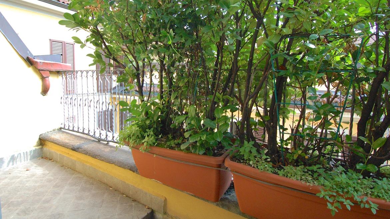 Affitto bilocale con terrazzo 1