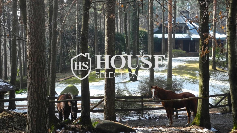 Vendita villa Sesto Calende, lago Maggiore, parco naturale 15